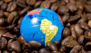 Business Etiquette South America