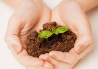 Fact vs Fiction Debunking Myths about Eco-Friendly Lifestyle