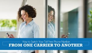 How to Transfer Toll Free Numbers from One Carrier to Another